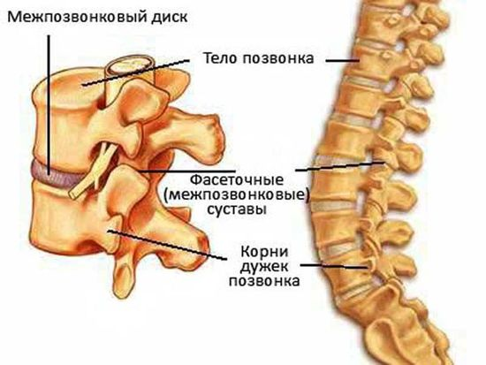 Остеохондроз поясничного отдела позвоночника: симптомы и лечение, причины возникновения боли