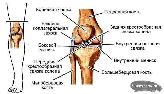 Растяжение связок коленного сустава степени профилактика лечение