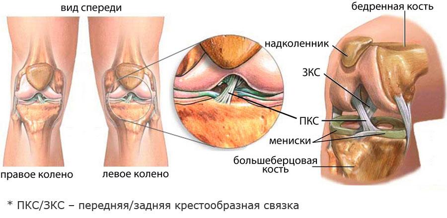 Болит сустав колена чем лечить