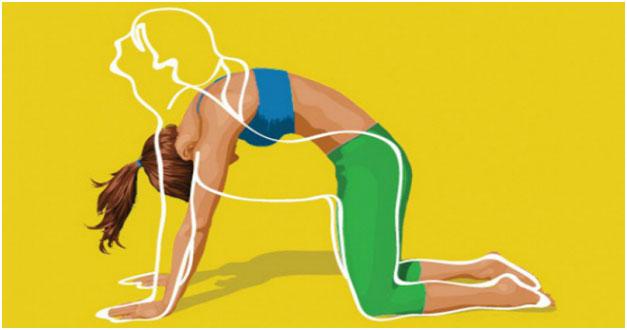 ЛФК при остеохондрозе поясничного отдела позвоночника: комплекс эффективных упражнений