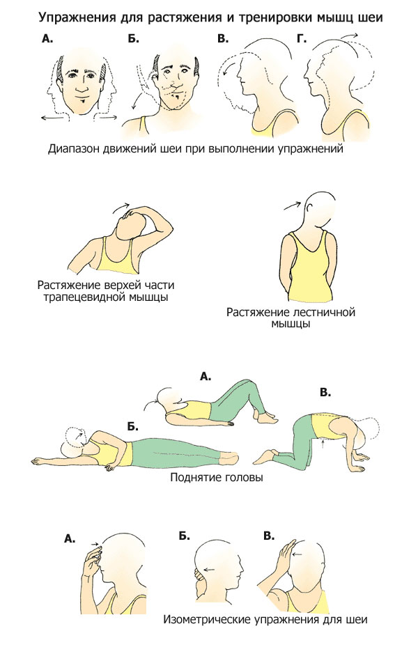 Лечебная гимнастика для шейного отдела позвоночника с картинками