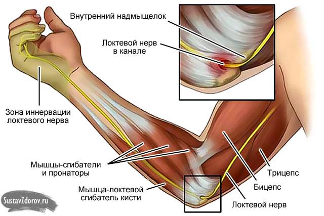 Начали болеть суставы на ногах