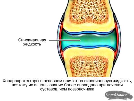 синовиальная жидкость сустава