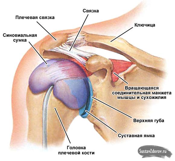 Болят плечевые суставы во сне лечение воспалении запястных суставов харьков