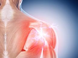 Плечевой сустав лечение народными средствами Популярно о здоровье