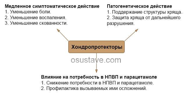 действие хондропротекторов